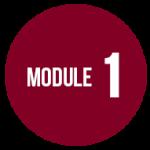 module1dd