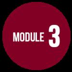 module3dd